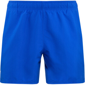"Nike Swim Solid Lap 5"" Volley Shorts Heren, hyper royal"